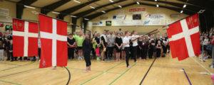 LSI Gymnastik Opvisning