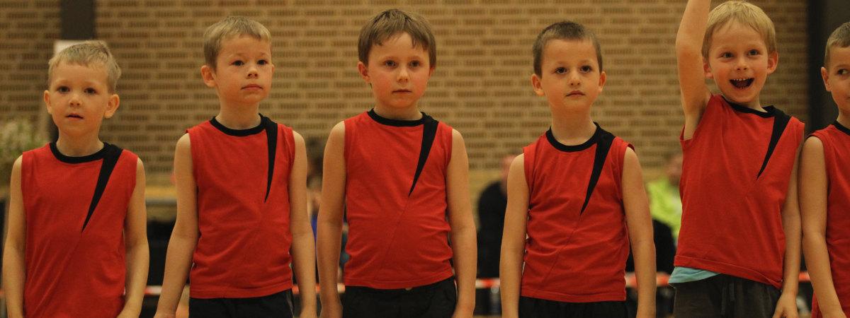 Drengegymnaster